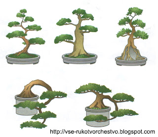 Формы дерева бонсай