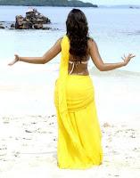 Actress, Ileana, in, Beach, Yellow, Short, Saree, Stills