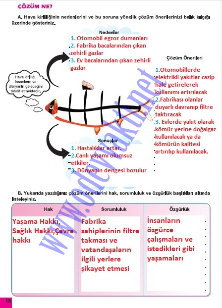Sınıf sosyal bilgiler meb yayınevi çalışma kitabı cevapları