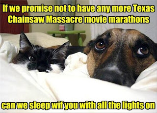 Hund und Katze Horrorfilm Marathon