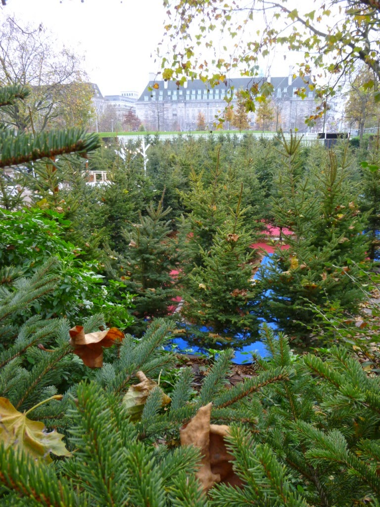 The Christmas Tree Maze at the Southbank Centre's Winter Festival in London