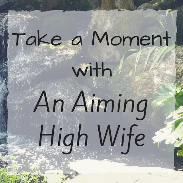 Take a Moment with An Aiming High Wife