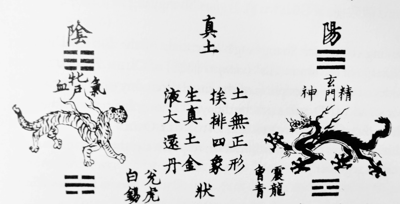 Taolainen perinne early literary sources of daoist internal alchemy like waidan early neidan utilized a complex map of human personhood wherein humans are understood as composed of diverse and disparate elements such as biocorpaavc Images