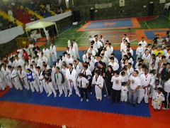 OPEN MINAS 2011