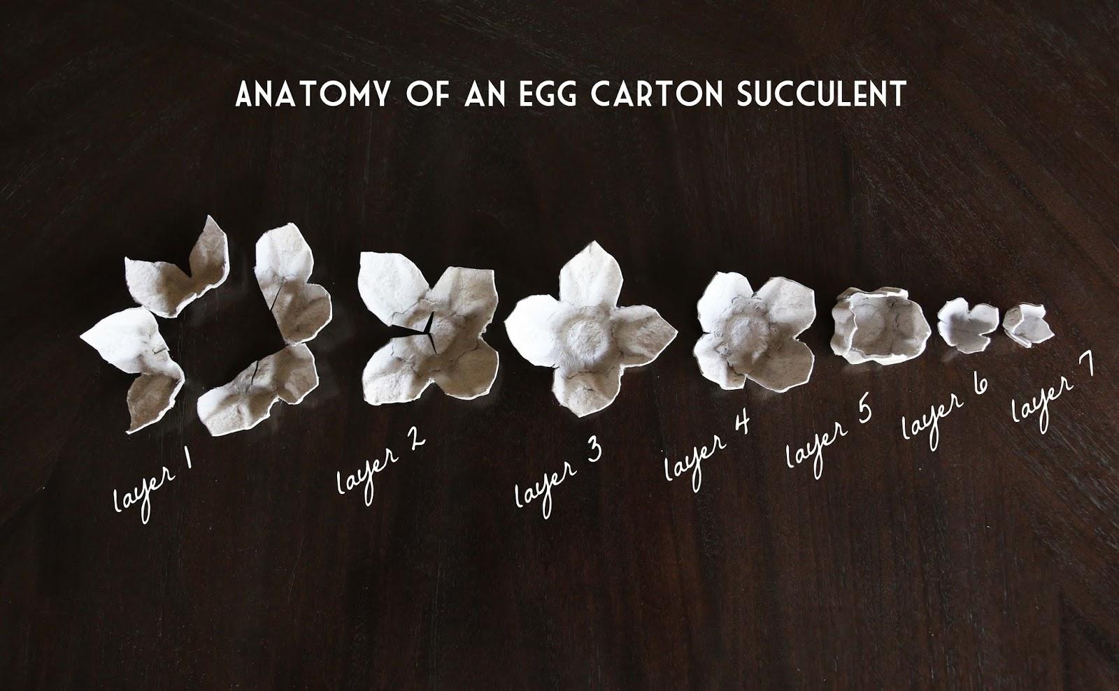 Как сделать рамку из яичных ячеек