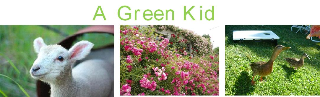 A Green Kid
