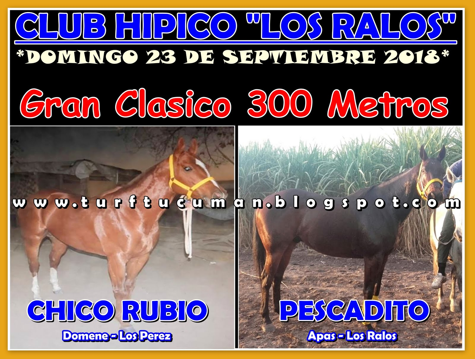 CHICO RUBIO VS PESCADITO