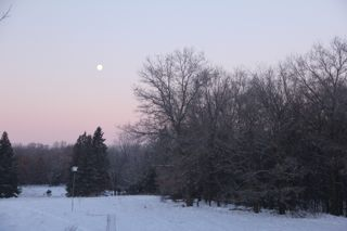 photo of winter morning moonset