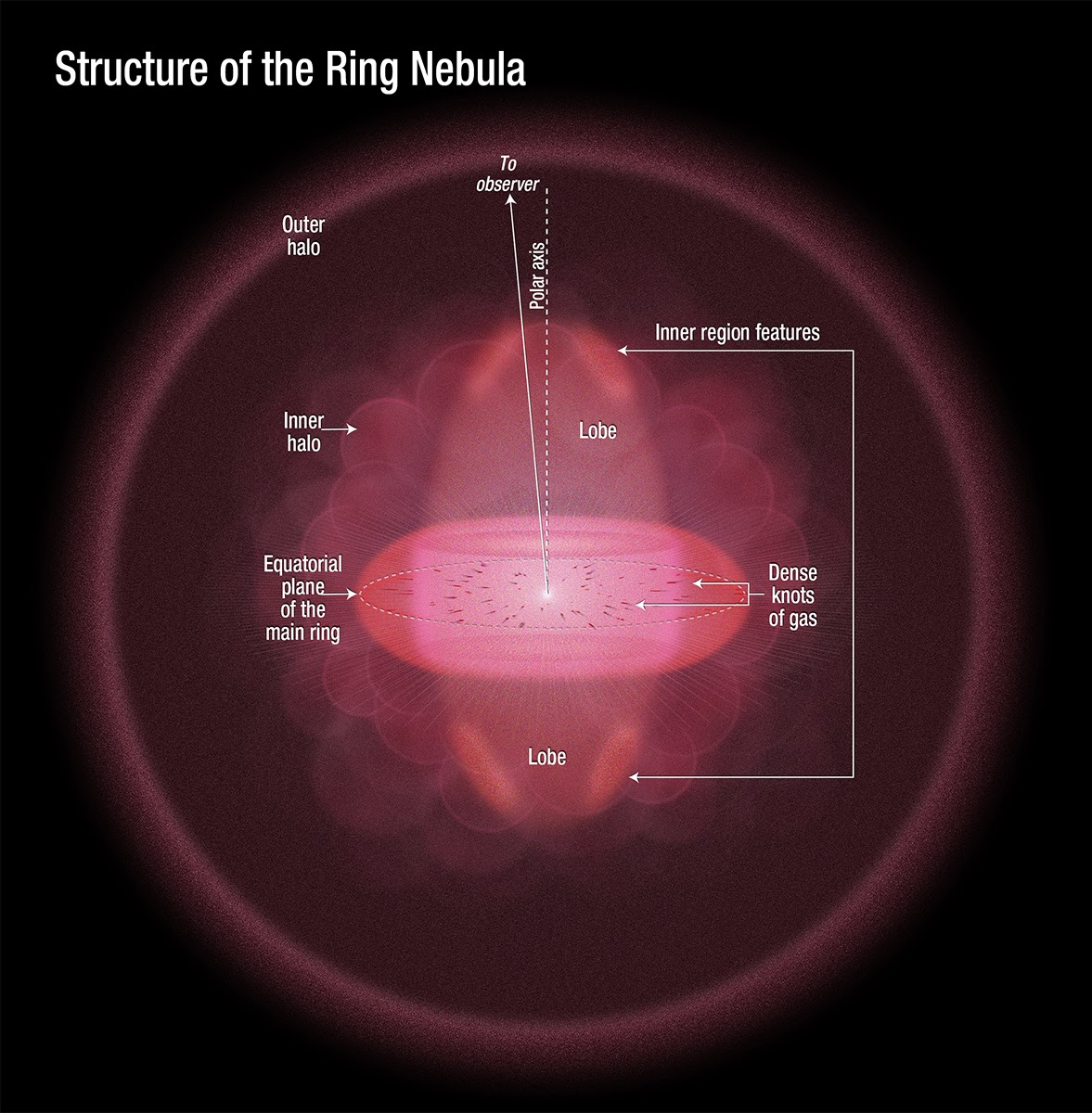Structure of the Ring Nebula