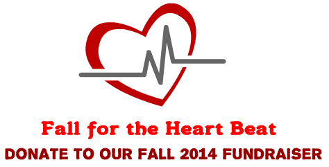 OUR 'FALL FOR THE HEART BEAT':  Fall Fundraiser