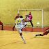 Saiba mais sobre o Histórico do Futsal