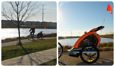 Via Velo Bike Trailer