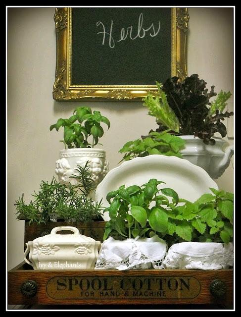 plate and platter garden