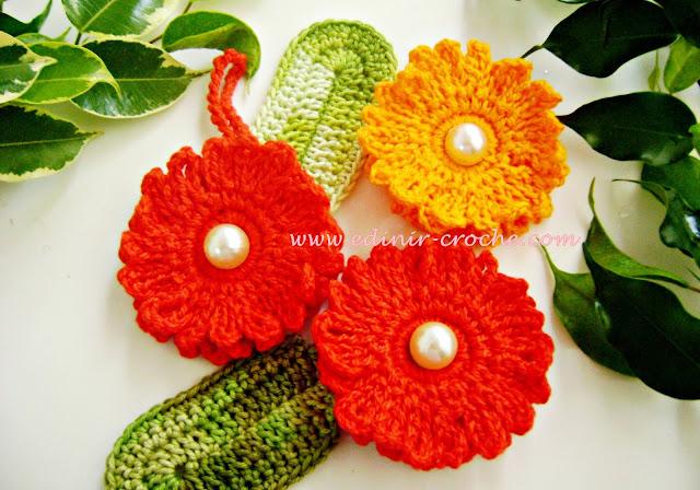 dvd flores em croche 2 curso da coleção aprendi e ensinei com edinir-croche videos aula blog loja