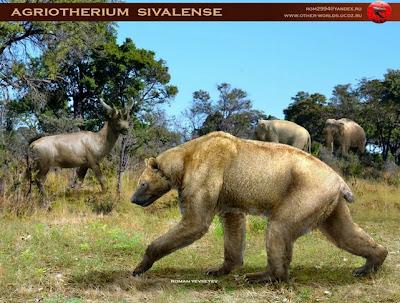 ursidae extinct Agriotherium