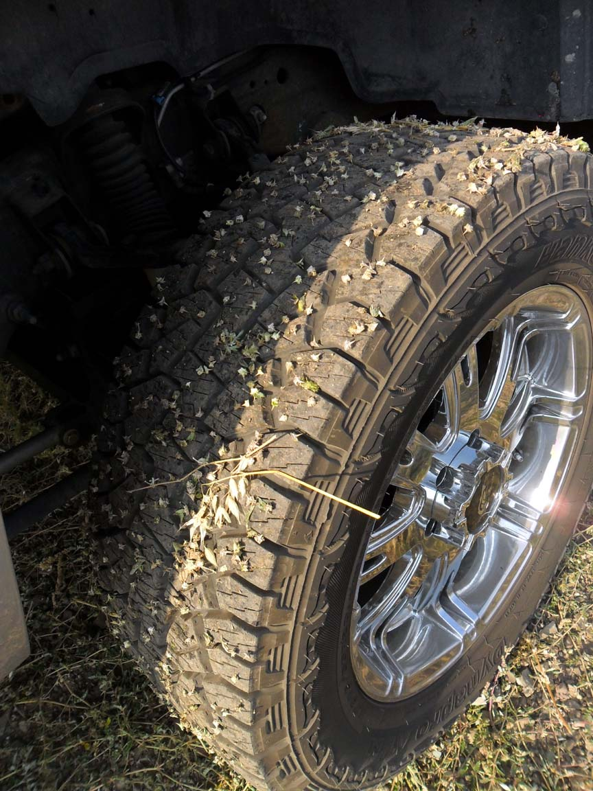 Image result for goathead on tires