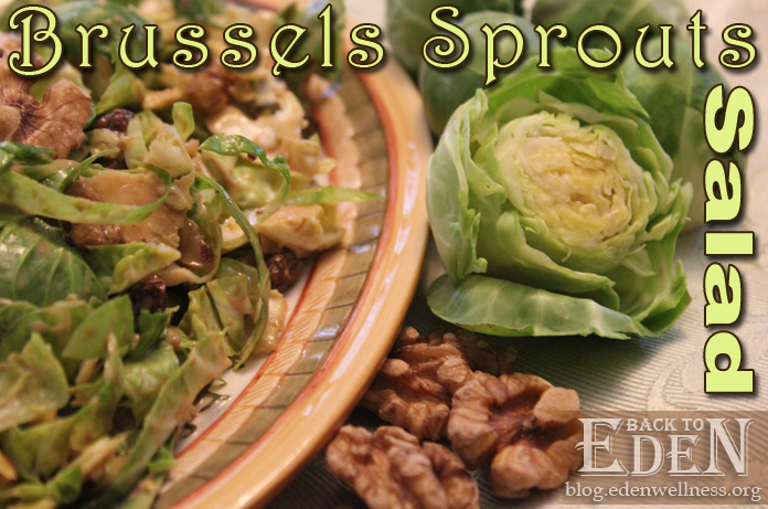 Brussels Sprouts Salad - {Back to Eden Health Ministry}