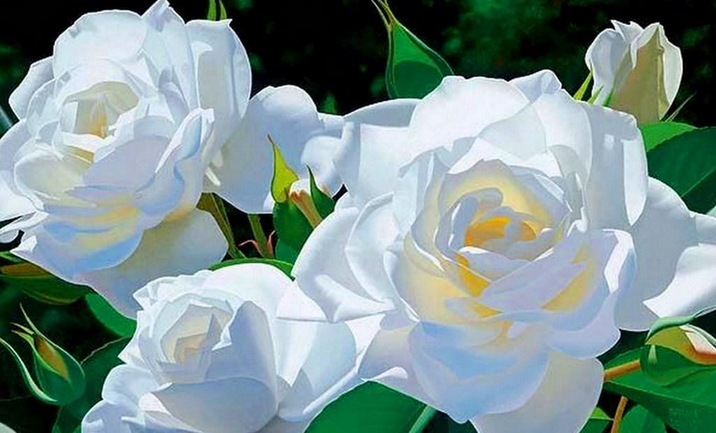 cuadros de flores bonitas al oleo sobre lienzo cuadros de