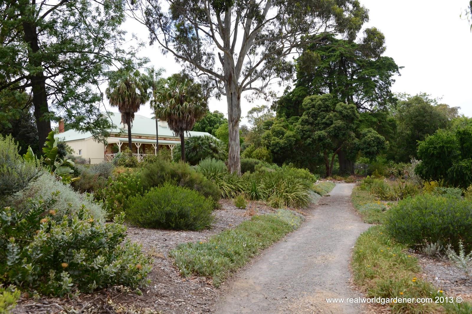 Real world gardener part 3 designing with grasses for Using ornamental grasses garden design