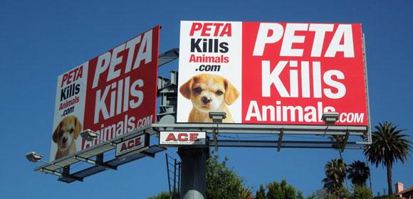 PETA kills animals...Κάνουν τους φιλόζωους αλλά πονάνε περισσότερο για τα 36 εκατομμύρια σκοτώνοντας χιλιάδες ζώα!