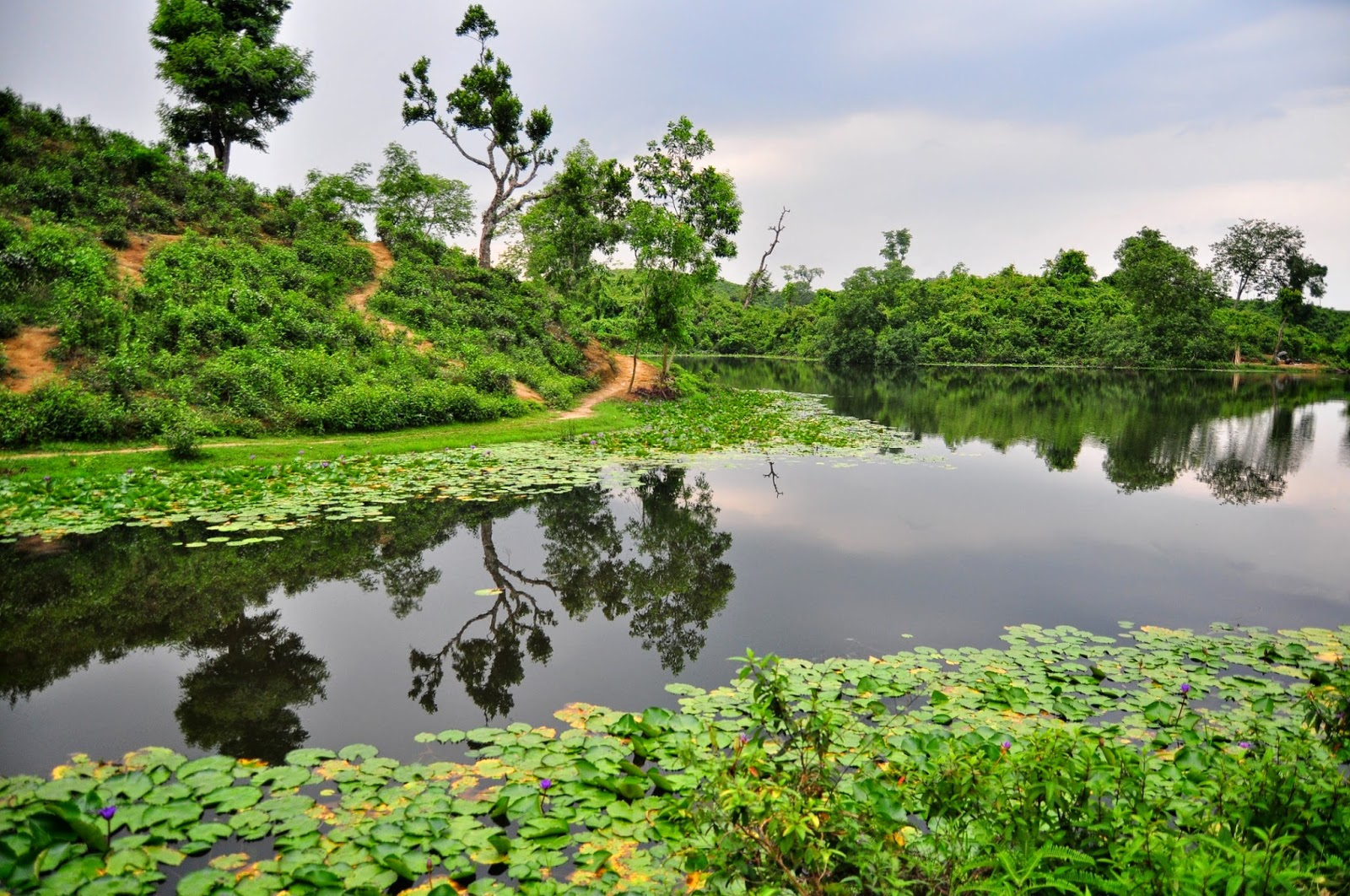 beauty of bangladesh Bangladesh is country of natural beauty it is a symbol of beauty.