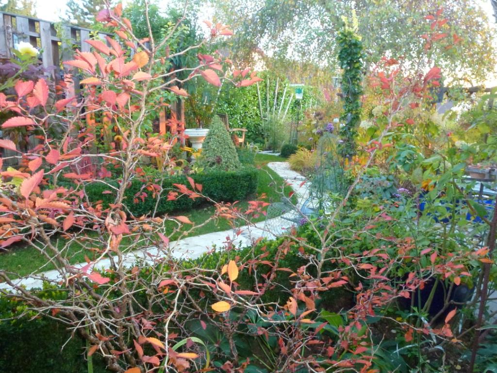 Le jardin des grandes vignes derniers feux - Le jardin des grandes vignes ...