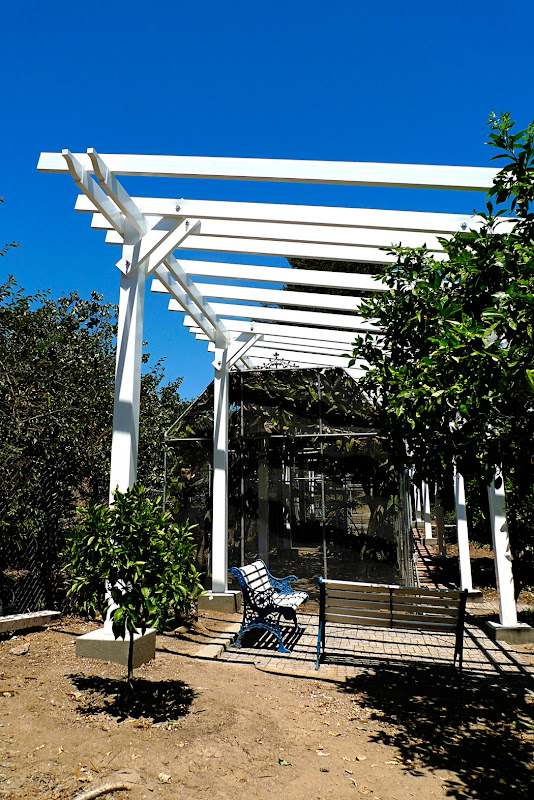 Able baker design did we mention pine cones i mean solar for What does pergola mean