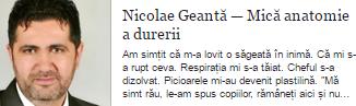 Nicolae Geantă — Mică anatomie a durerii