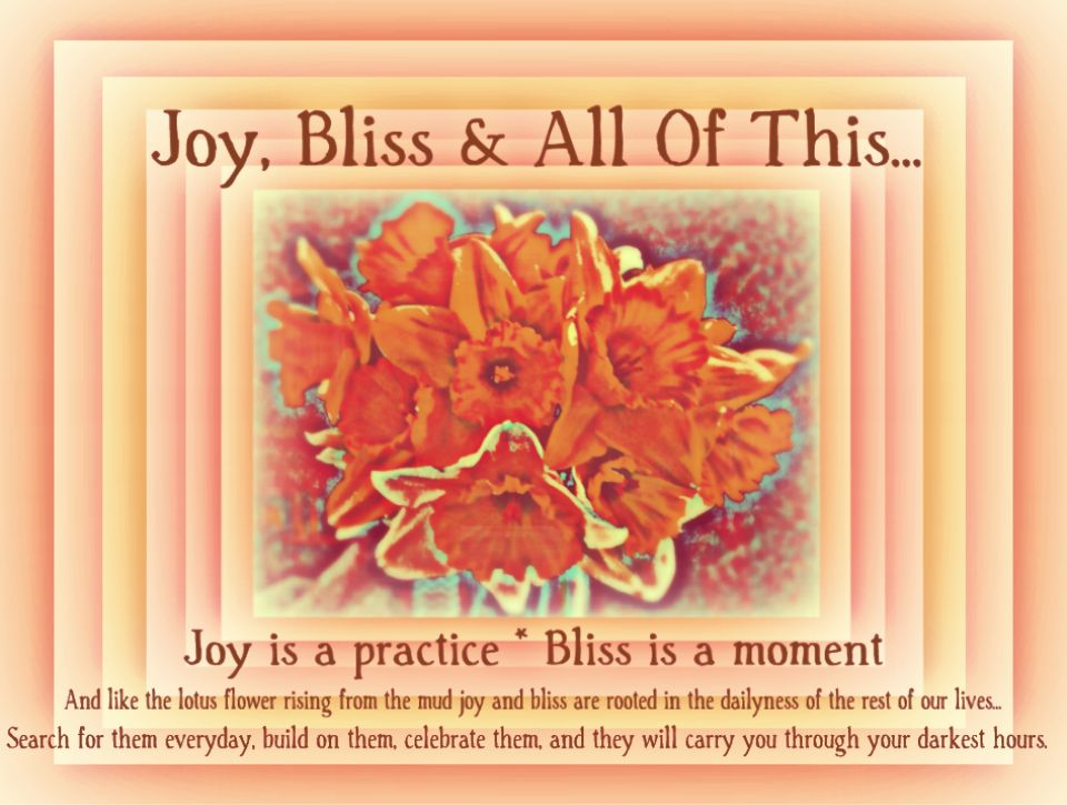 Joy, Bliss & All Of This...