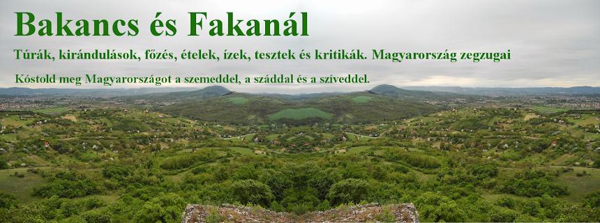 Bakancs és Fakanál