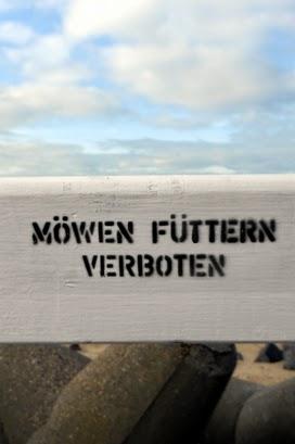 Möwen