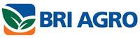 Lowongan Kerja PT Bank Rakyat Indonesia Agroniaga Tbk, Officer Development Program (ODP) - Juni 2013