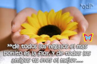 imágenes de pensamientos de amor en flores