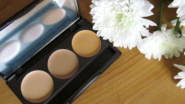 louise young super concealer