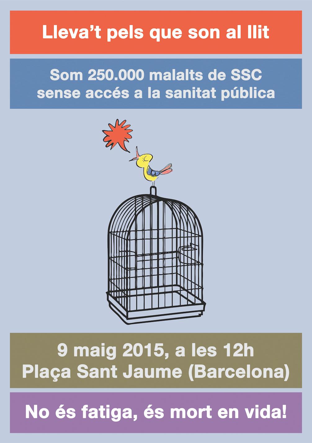 9 de Mayo del 2015, a las 12 h - Plaça Sant Jaume de Barcelona