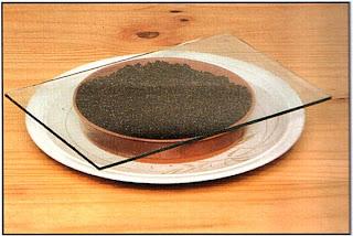 Накройте плошку стеклом и поставьте в блюдце с водой, лучше всего с мягкой дождевой