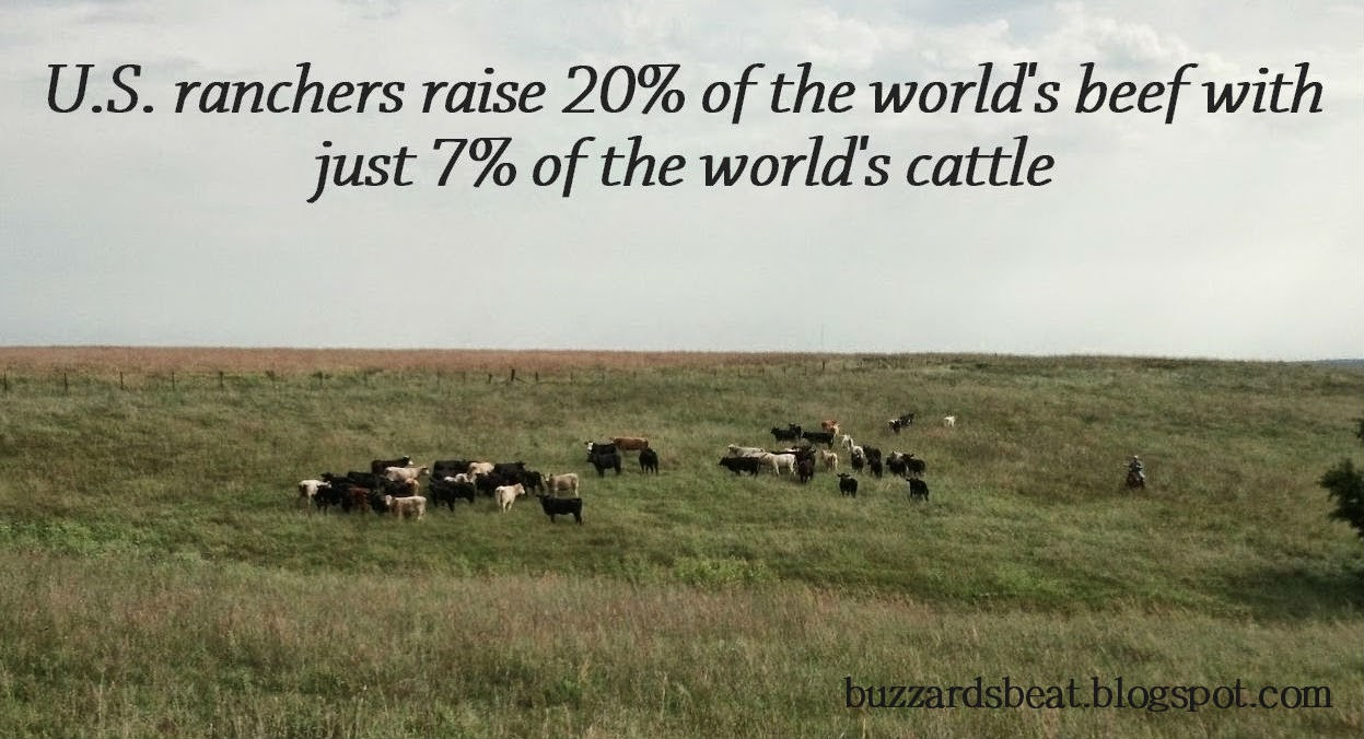 Sustainably producing more beef using fewer resources - that's the American beef industry on Earth Day and every day!