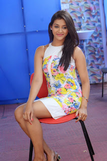 Actress Pooja Jhaveri Latest Picture Shoot Gallery in Floral Short Dress  025.JPG