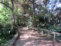 Heading north in Ferndell gardens, Griffith Park