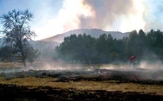 Ley de Montes que permite construir en terreno incendiado