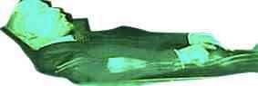 green lennie