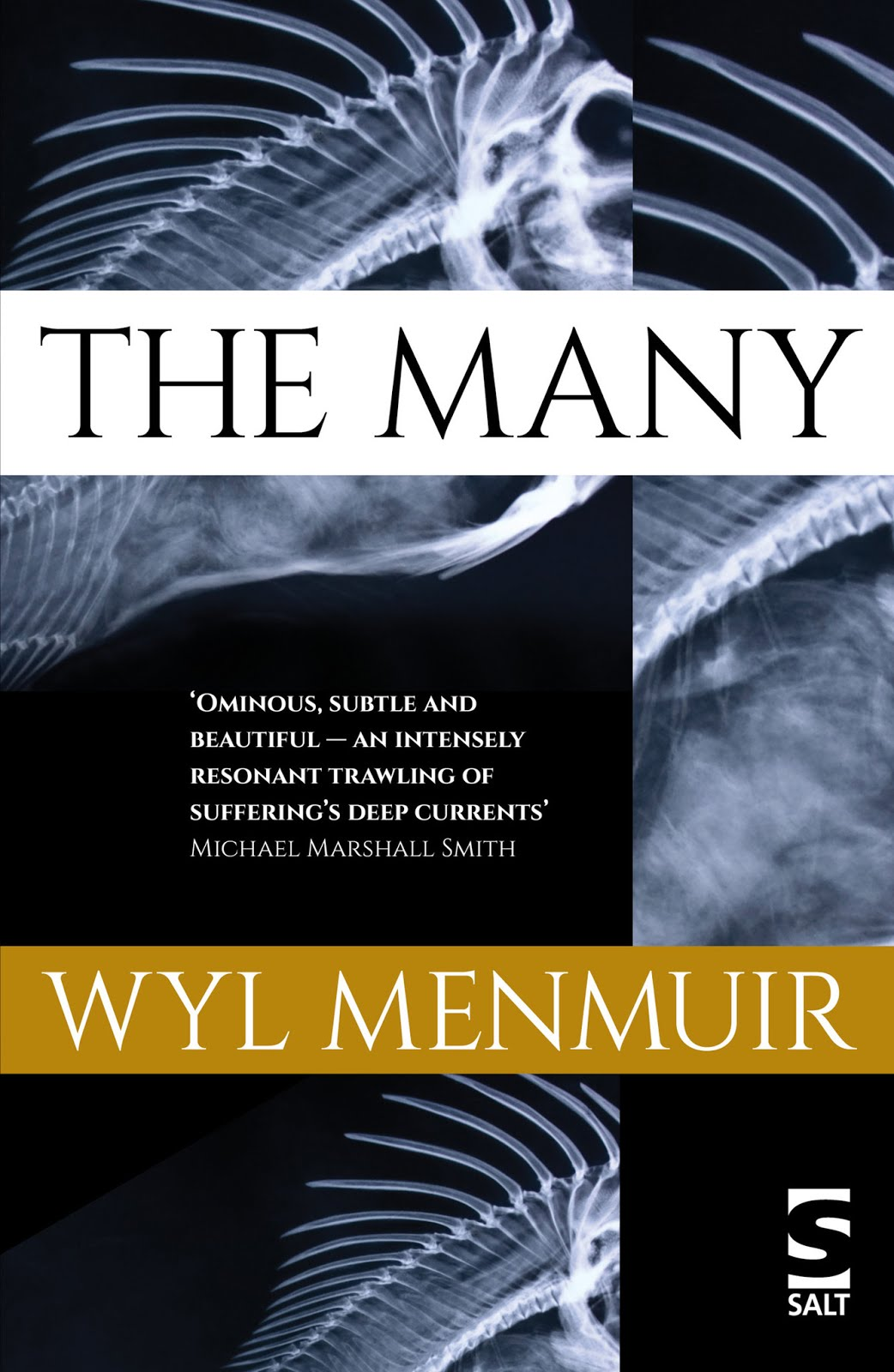 Recently Reviewed: The Many, by Wyl Menmuir
