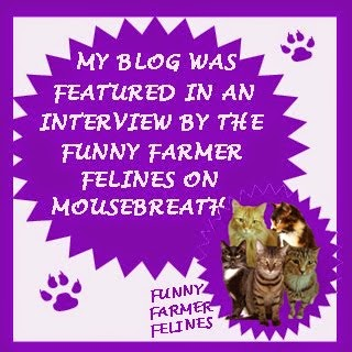 We Were Interviewed & Featured on Mousebreath