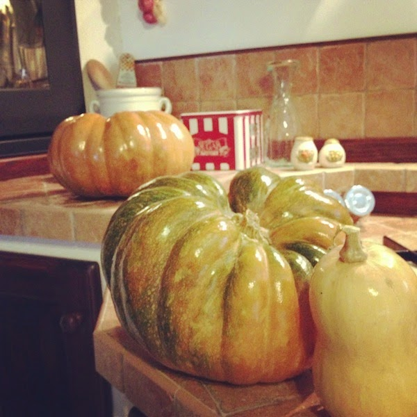 A lot of Pumpkins !! - shabby&countrylife.blogspot.it