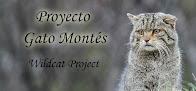 Colabora con Proyecto Gato Montés