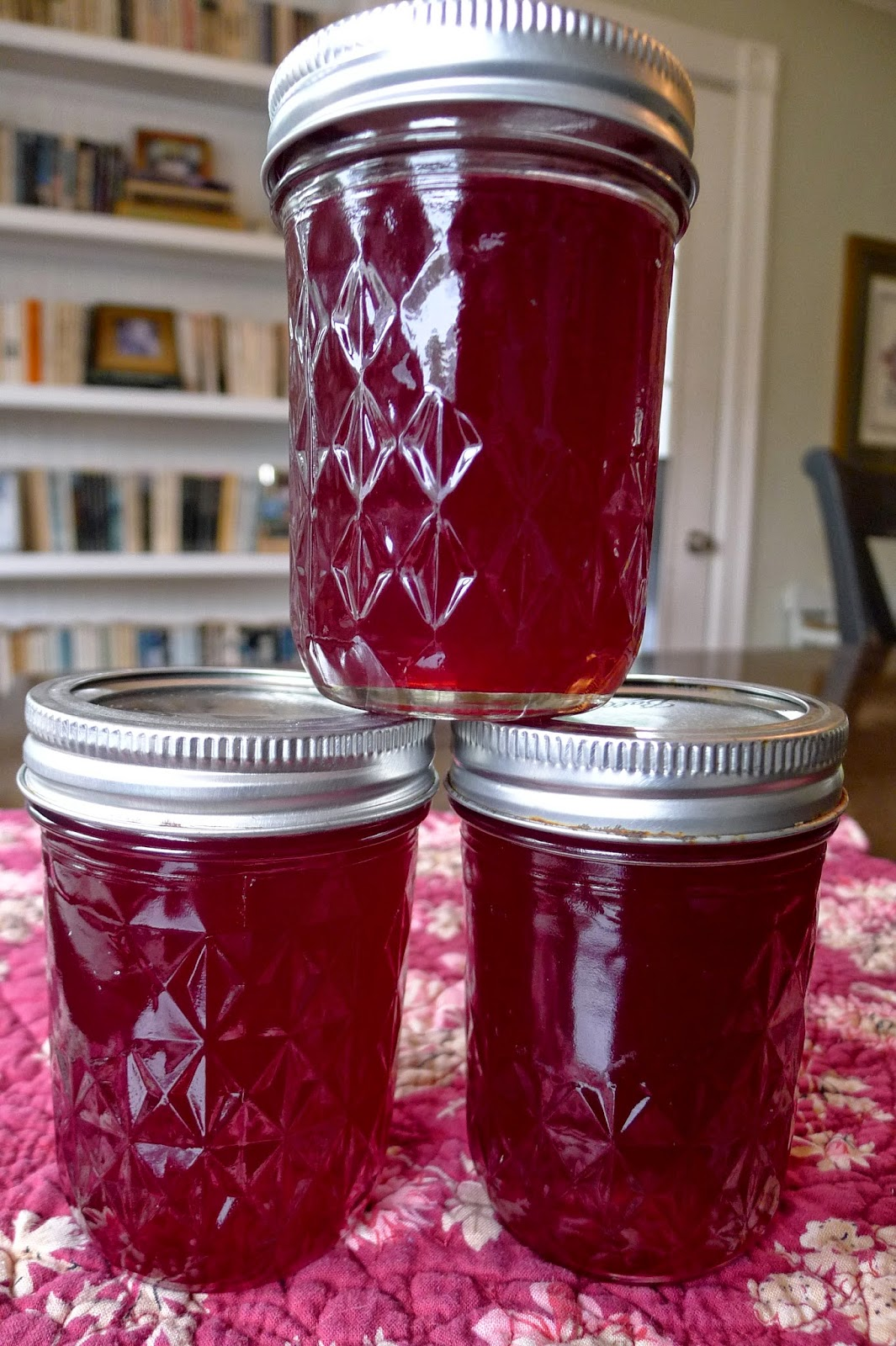 Red currant jelly, preserving