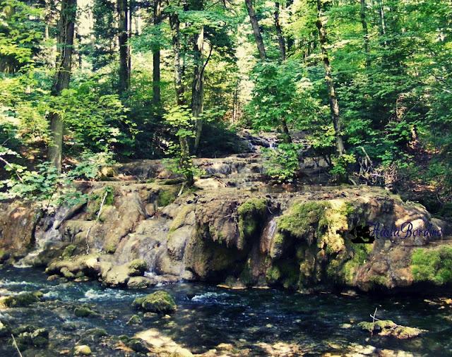 cascada beusnita secata 2008