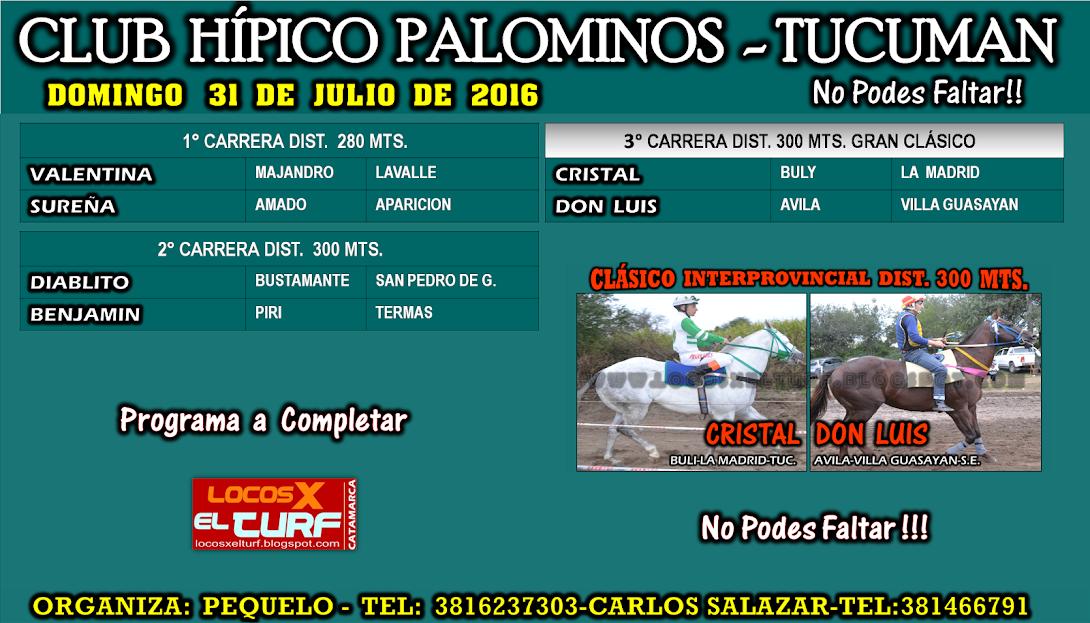 31-07-16-HIP. PALOMINOS-PROG.
