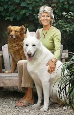 Sue Ahrend