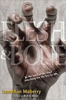 bookcover of FLESH & BONE  (Rot and Ruin series/Benny Imura #3) by Jonathan Maberry